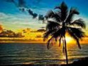 Hawaii1_5